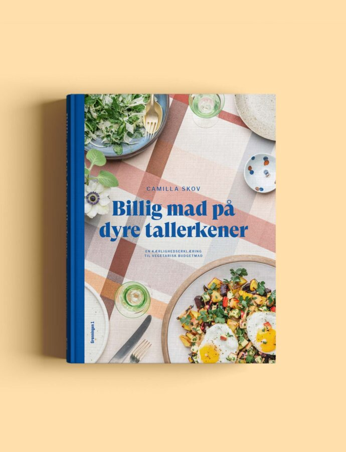 Min nye bog!